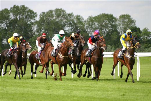 Horseracing (Custom)