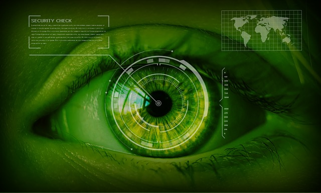 image representing retinal scanner technology